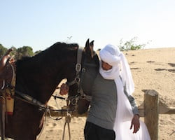Horse With Berber Travel Guide on Moroccan Beach
