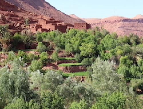 Atlas & Sahara Hike