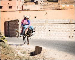 Berber Tribesman Carrying Produce on his Donkey, Morocco