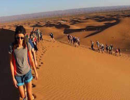Sahara 50K Trek