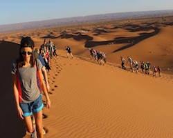 Tourists Trekking across tall sand dunes in the Sahara Desert, Morocco