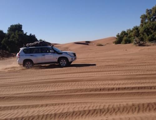 Sahara Desert Tour – 感受沙漠