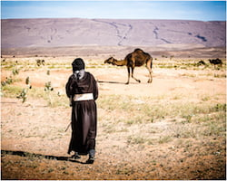 Beldi Nomad With Camel in Sahara Desert