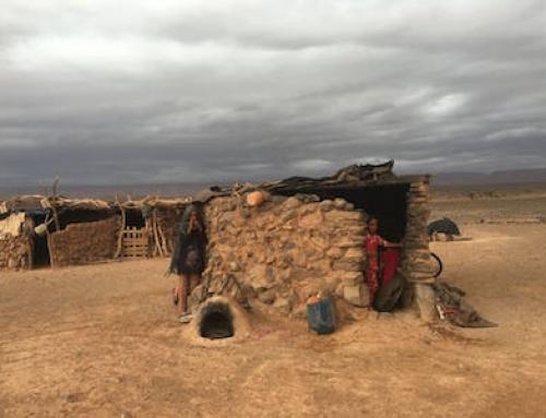 Sahara Desert Tours – When it rains it pours!