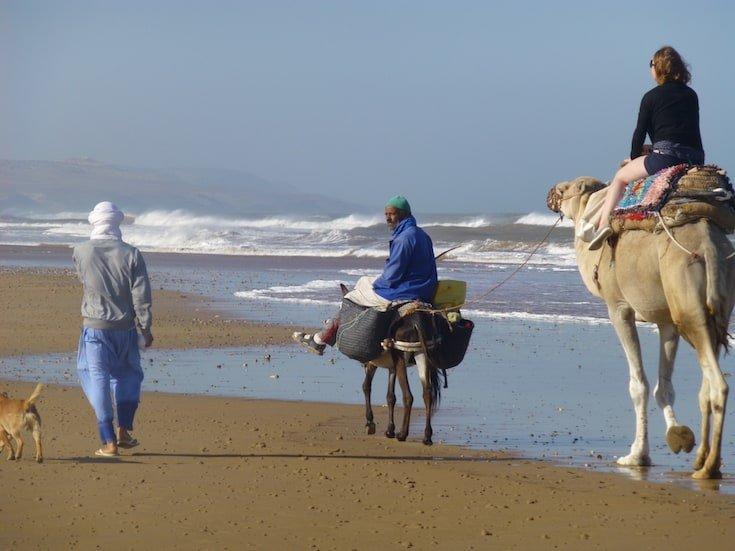 beach-camel-trek-morocco-www.moroccanjourneys.com
