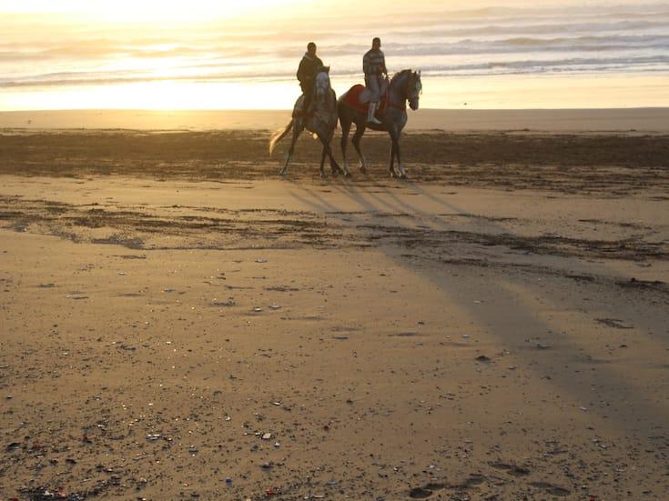 beach-horse-trekking-morocco-www.moroccanjourneys.com