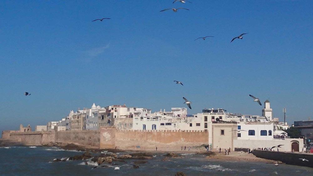 Morocco Family holidays Esssaouira port