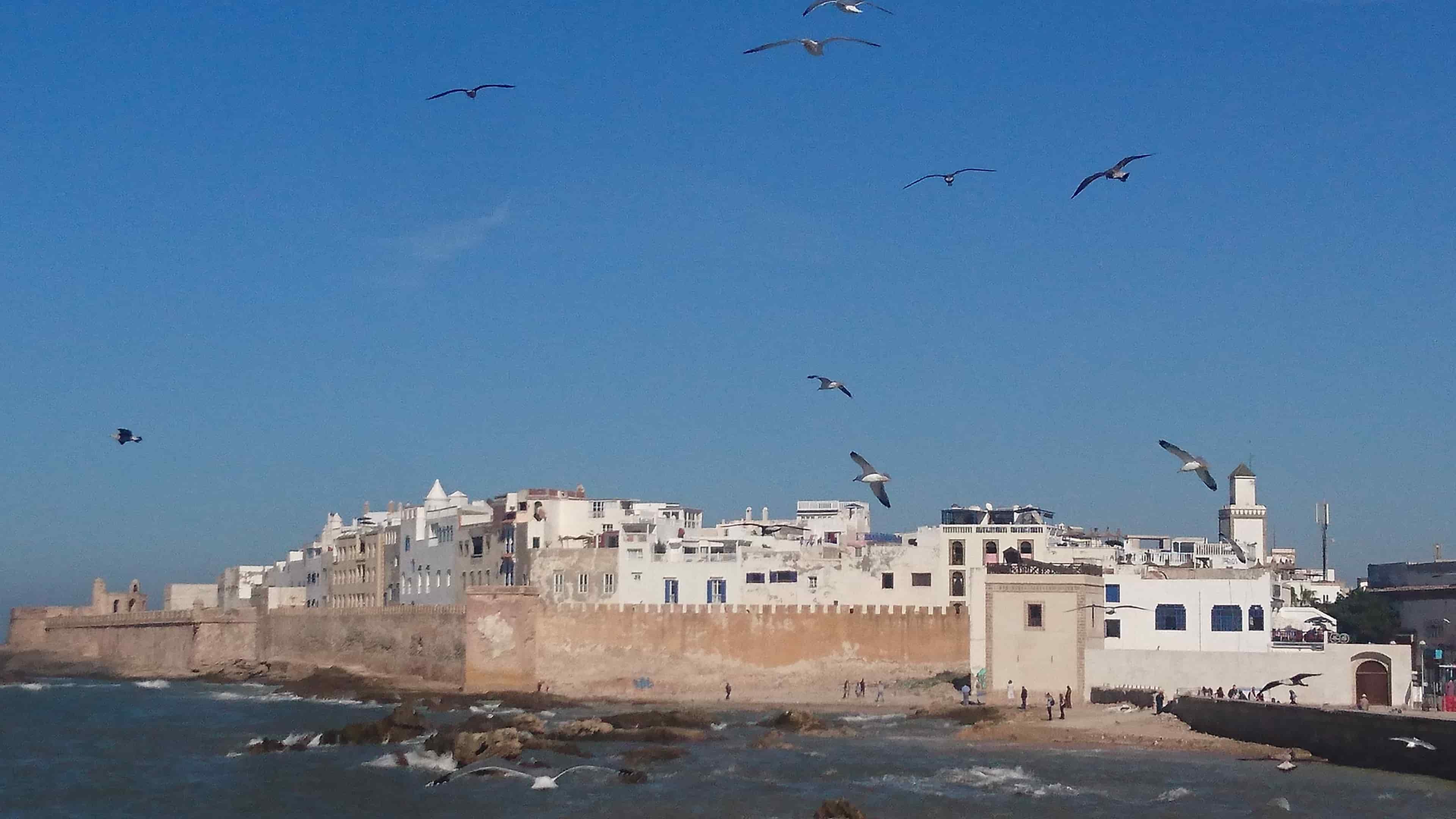 morocco-holidays-essaouira