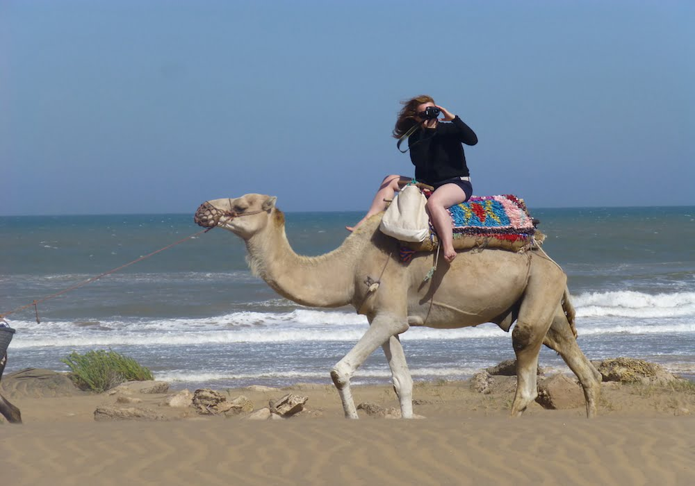 Female tourist taking photographs while riding a camel on Moroccan beach with Atlantic ocean waves breaking in background